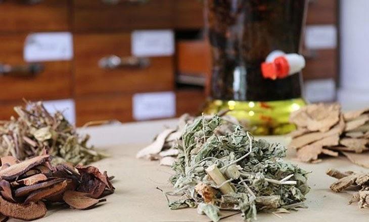 bài thuốc quý từ tinh hoa trong cuốn Châu bản triều Nguyễn - Ngự dược nhật ký
