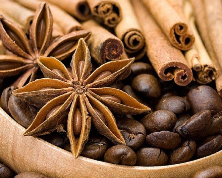 Kết hợp rễ cau và thảo dược vừa tăng hiệu quả điều trị vừa giúp phái mạnh cải thiện sức khỏe
