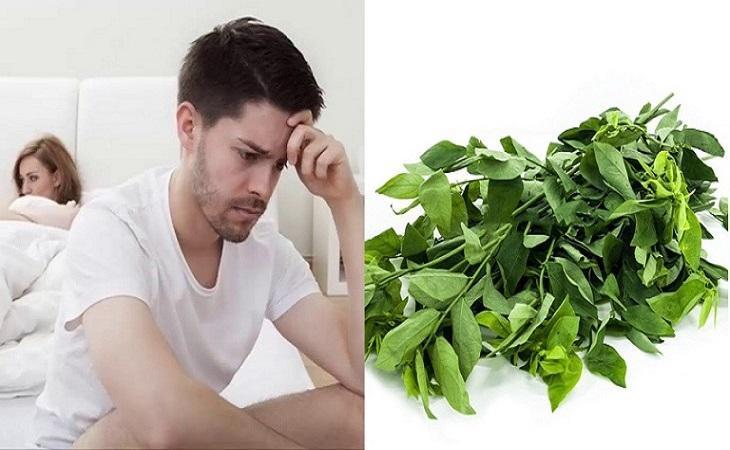 Rau ngót giúp tăng cường khả năng sinh lý nam giới