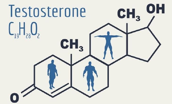 """Số lượng """"tinh binh"""" suy giảm có liên quan tới nồng độ Suy giảm testosterone trong cơ thể nam giới"""