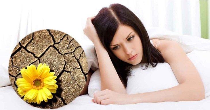 Nguyên nhân khiến âm đạo khô hạn có thể từ sinh lý, bệnh lý hoặc kỹ năng quan hệ của nam giới