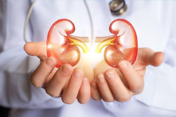 Hội chứng thận hư là tình trạng rối loạn ở thận khi cơ thể bài tiết quá nhiều protein