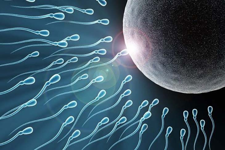 Tinh trùng vón cục phải điều trị sớm tránh ảnh hưởng đến khả năng sinh sản