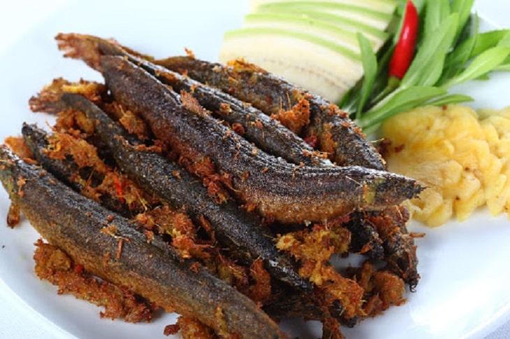 Cá chạch là món ăn giàu dinh dưỡng cho nam giới