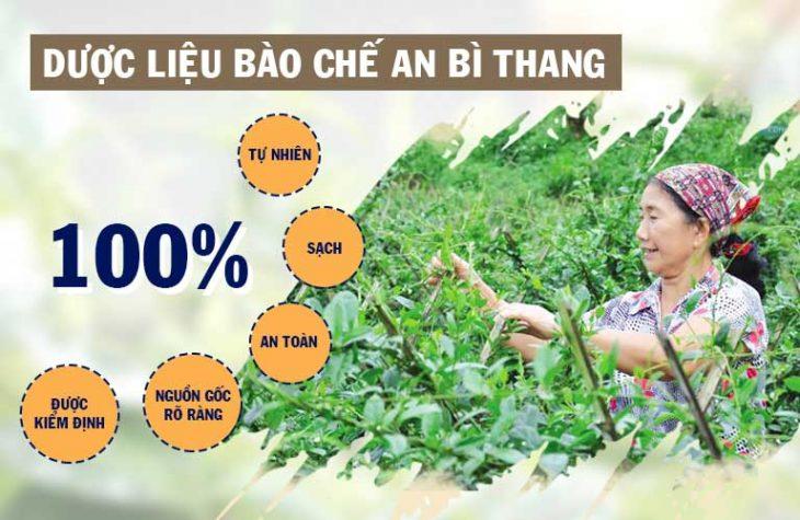 An Bì Thang được bào chế với thành phần 100% thảo dược thiên nhiên