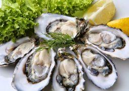 Hàu biển là thực phẩm hàng đầu trong danh sách những thực phẩm tốt cho nam giới