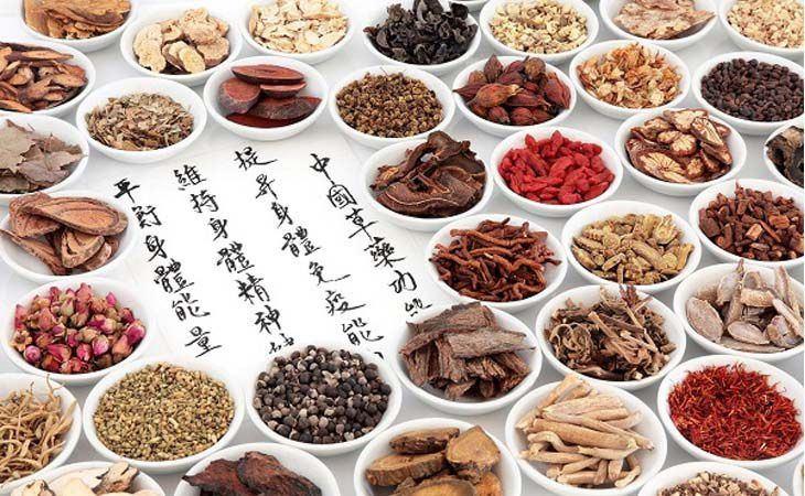 Một số vị thuốc Đông y dùng trong điều trị thoái hóa cột sống