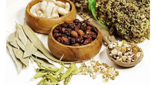 Thuốc Đông Y đang là phương pháp chữa viêm tuyến tiền liệt được nhiều người áp dụng