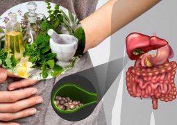 Mẹo chữa sỏi mật bằng phương pháp dân gian được nhiều người bệnh tin dùng