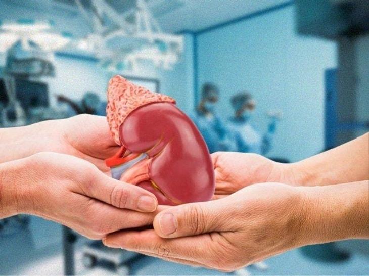 Phương pháp ghép thận là phương pháp hiện đại nhất, khó thực hiện nhất và đem lại hiệu quả triệt để nhất cho người bệnh