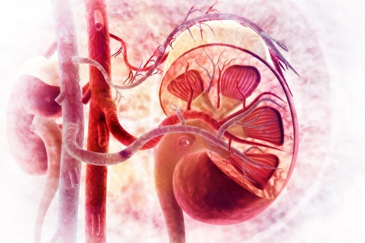 Hình ảnh cho biến chứng viêm cầu thận