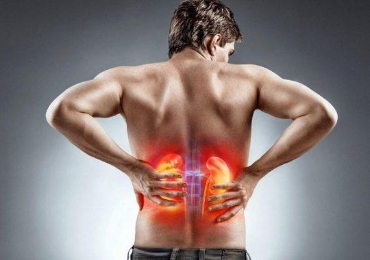 Thận yếu là bệnh lý xuất hiện khi chức năng thận bị suy giảm