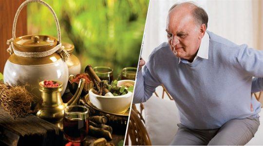 Các thuốc Đông y trị thoái hóa cột sống phổ biến hiệu quả cao