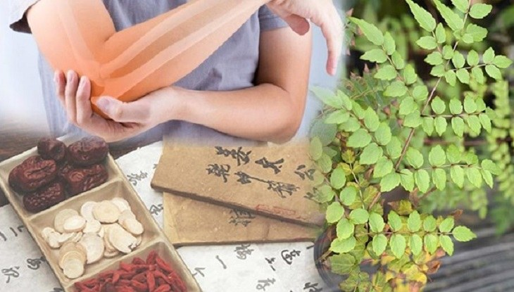 Bài thuốc dân gian giúp giải độc, thông kinh lạc, giảm đau