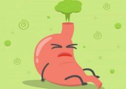 Axit dạ dày là gì? Những vấn đề thường gặp và cách cân bằng