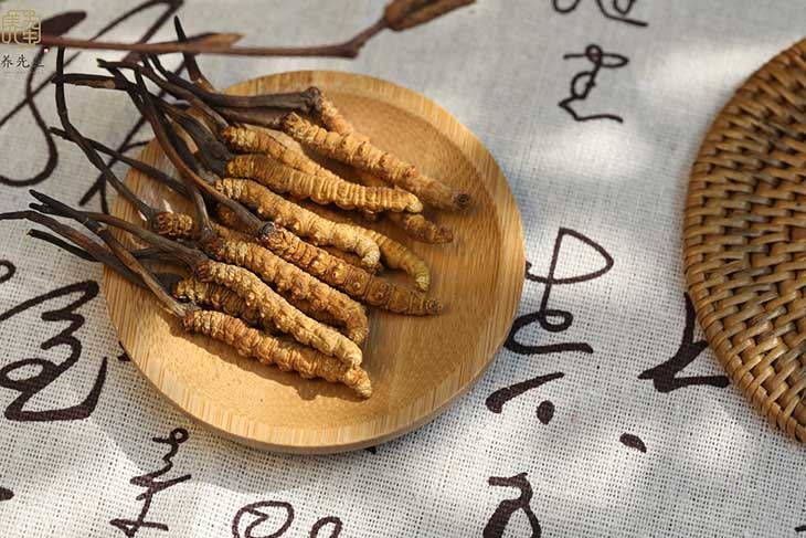 Đông trùng hạ thảo khô có thể ăn trực tiếp