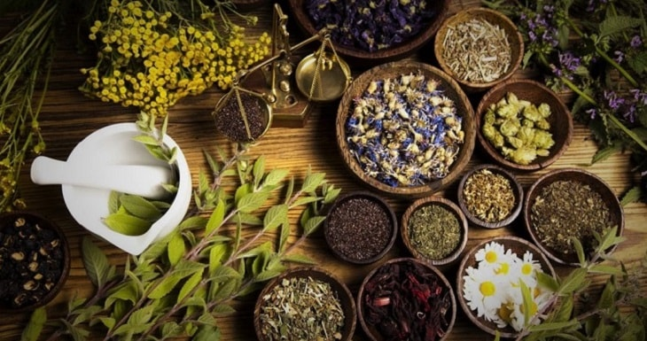 Các vị thuốc Đông y điều trị thuyên giảm triệu chứng