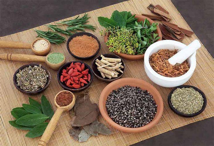Có rất nhiều vị thuốc Đông dược được sử dụng để điều trị các bệnh liên quan đến hiện tượng này