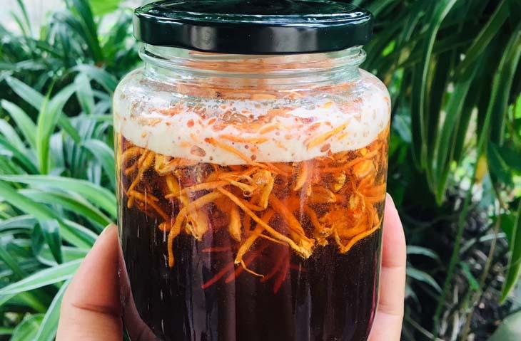 Đông trùng hạ thảo khô ngâm rượu mật ong