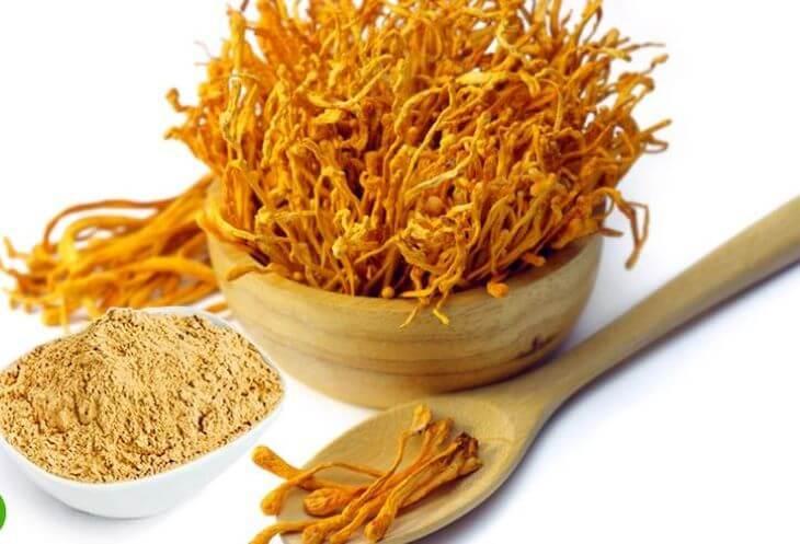 Các chế phẩm dạng bột của đông trùng hạ thảo tiện lợi để sử dụng