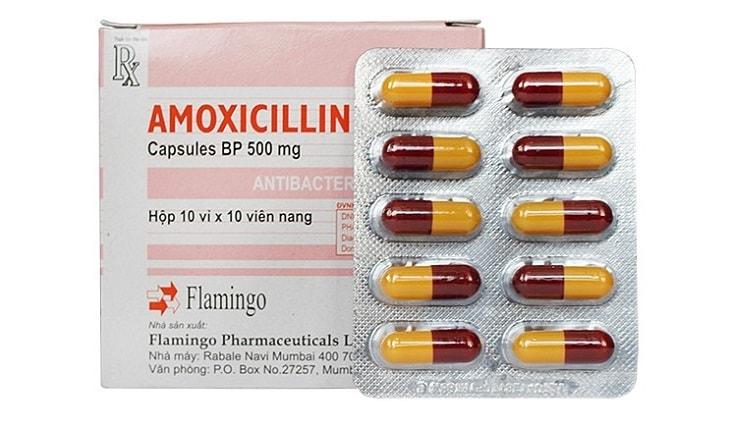 Amoxicillin là thuốc kháng sinh chữa viêm đường tiết niệu quen thuộc ở Việt Nam