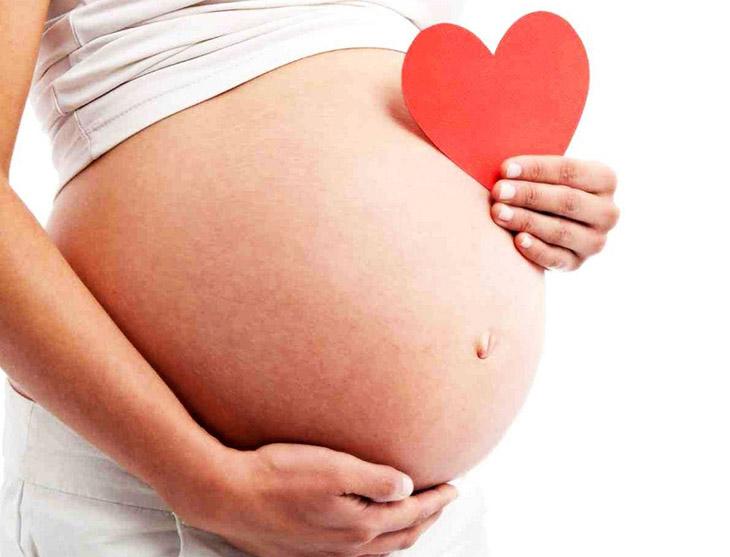 Công dụng của đông trùng hạ thảo với phụ nữ đang mang thai