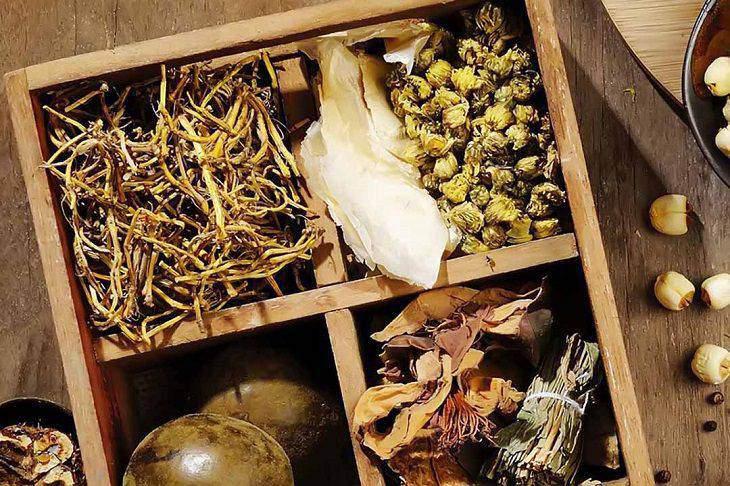 Một số vị thuốc tốt cho dạ dày thường dùng trong Đông y