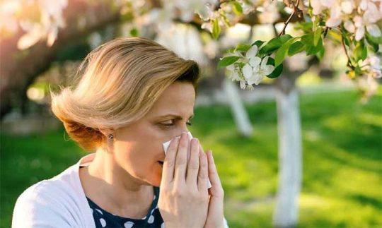 Người bệnh nên tránh xa các tác nhân gây dị ứng để phòng ngừa mề đay