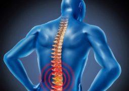 Tổng hợp cách chữa thoái hóa đốt sống lưng hiệu quả (Chi tiết nhất)