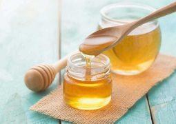 Dùng bí đao kết hợp với mật ong và một số loại thuốc khác