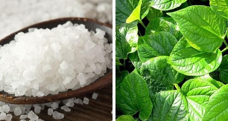 Muối là chất có tính sát khuẩn cao, thường được kết hợp cùng các vị dược liệu
