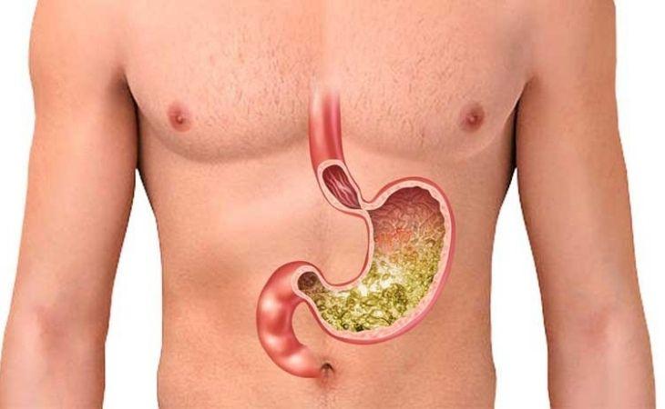 Dạ dày nằm ở đâu là mối quan tâm của rất nhiều người