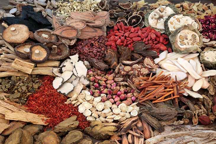 Đông y dùng nhiều dược liệu để trị đau dạ dày buồn nôn tiêu chảy