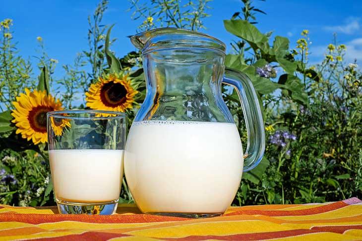 Đau dạ dày uống sữa tươi mang đến nhiều công dụng