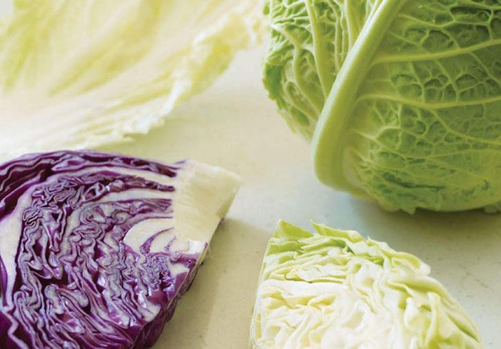 Bắp cải chứa nhiều chất xơ tốt cho dạ dày