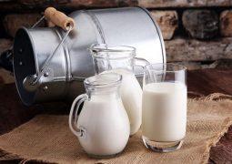 thoát vị đĩa đệm nên uống sữa gì