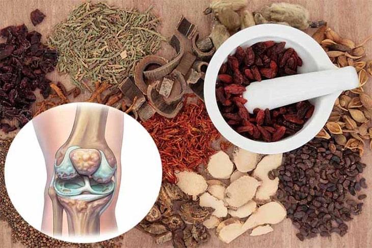 Thuốc đông y trị đau khớp gối hiệu quả