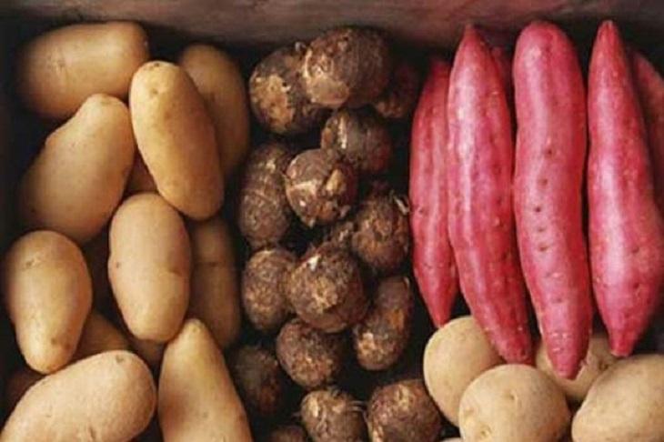 Các thực phẩm từ bột đường tự nhiên như các loại khoai rất tốt cho bệnh nhân