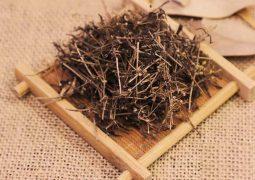 Bạch hoa xà thiệt thảo mang tới nhiều công dụng cả trong YHCT và Y học hiện đại