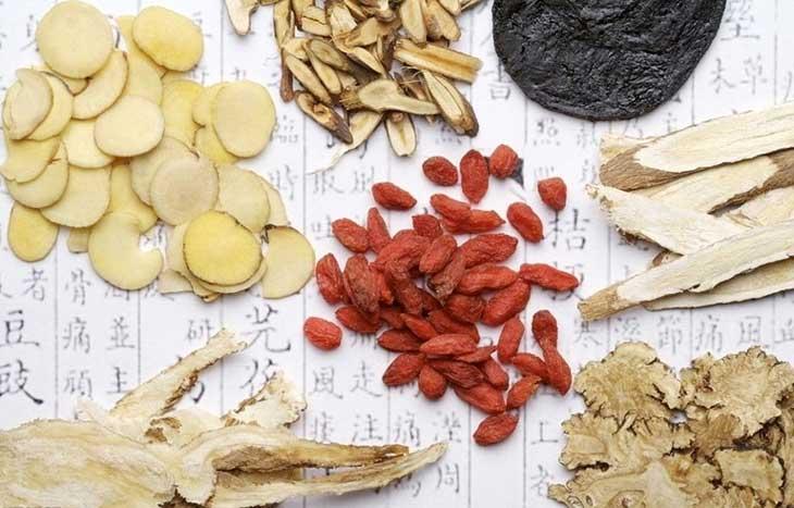 Bạch truật là vị thuốc quen thuộc trong y học cổ truyền