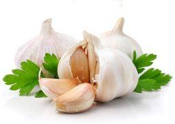 Bị viêm dạ dày HP nên ăn gì? Tỏi là một trong những thực phẩm hàng đầu được khuyên dùng