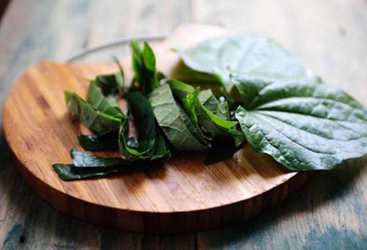 Bài thuốc xông hơi chữa viêm da cơ địa từ lá lốt
