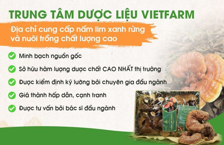 Nấm lim xanh Vietfarm được hàng triệu người yêu thích