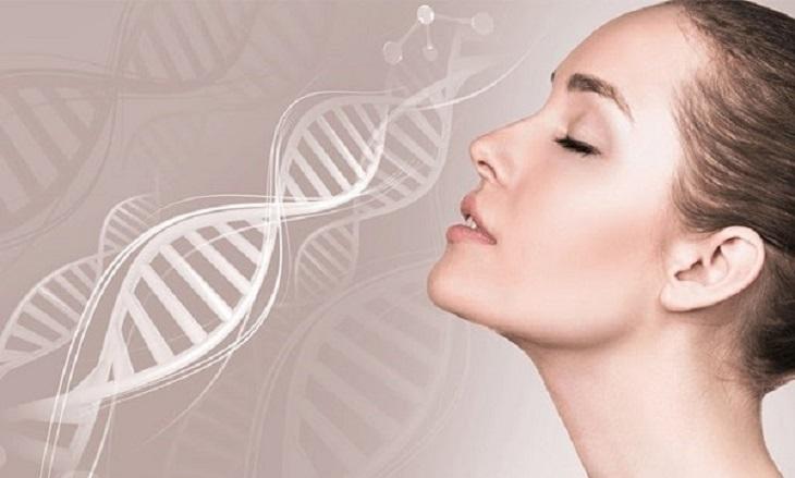 Da mặt sẽ trở nên trẻ trung, căng mịn hơn nếu được thường xuyên bổ sung collagen