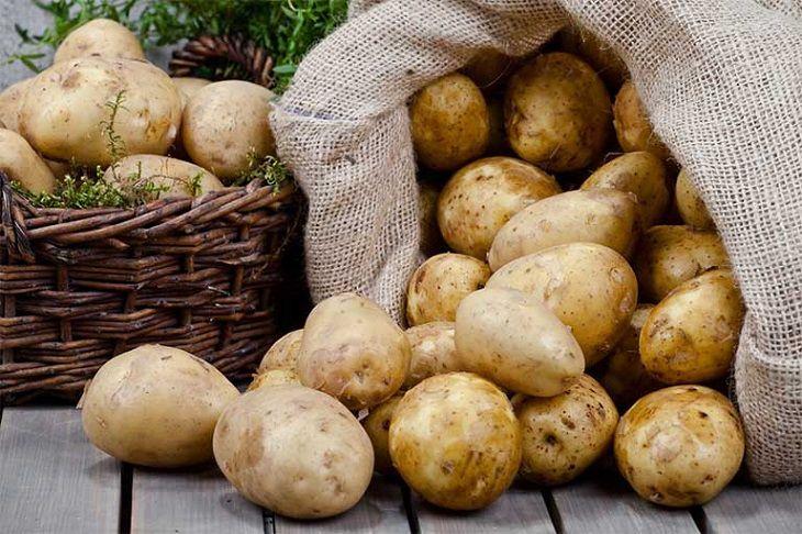 Mẹo dùng khoai tây trị viêm dạ dày hành tá tràng trong dân gian