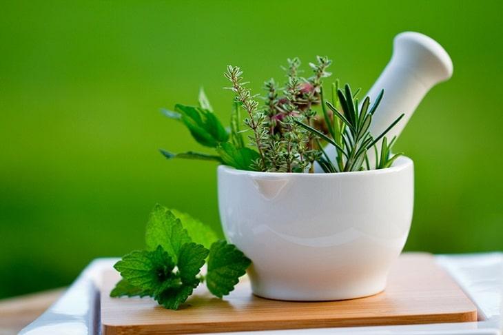 Mẹo dân gian điều trị viêm khớp răng sử dụng cây cỏ nguồn gốc tự nhiên