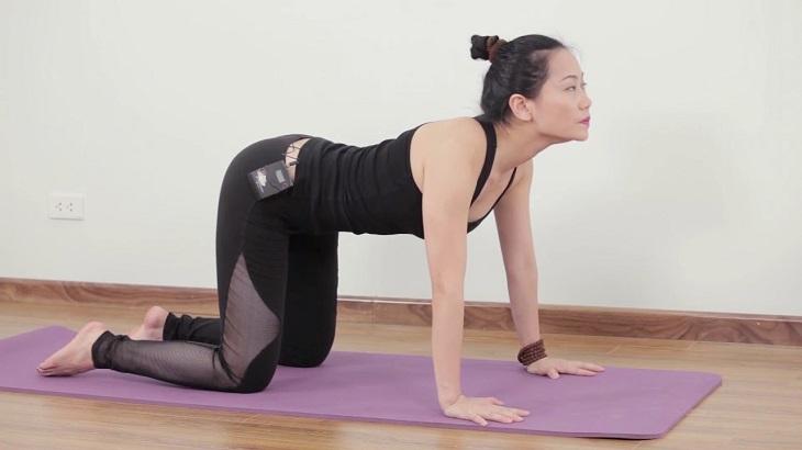 Tư thế con mèo là bài tập khá phổ biến trong bộ môn yoga.