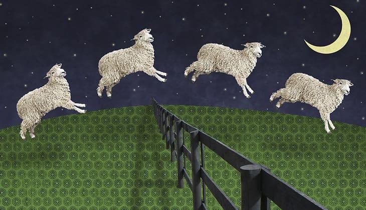 Tưởng tượng con cừu vượt rào