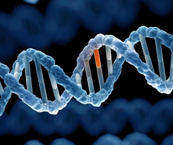 Nguyên nhân gây vảy nến có sự liên quan đến gen và yếu tố di truyền