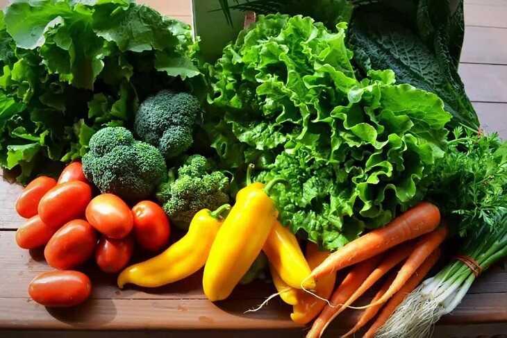 Chế độ dinh dưỡng của người bị bệnh da liễu cần bổ sung nhiều rau củ quả xanh